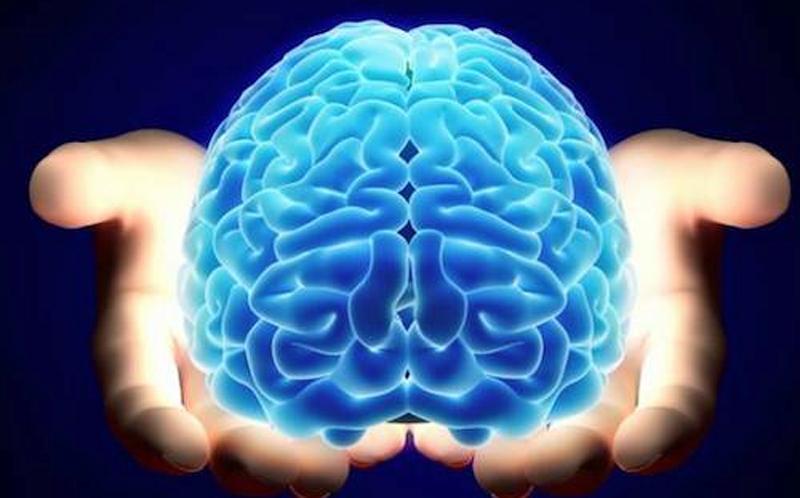Мозок людини у долонях