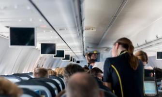 факти про стюардес